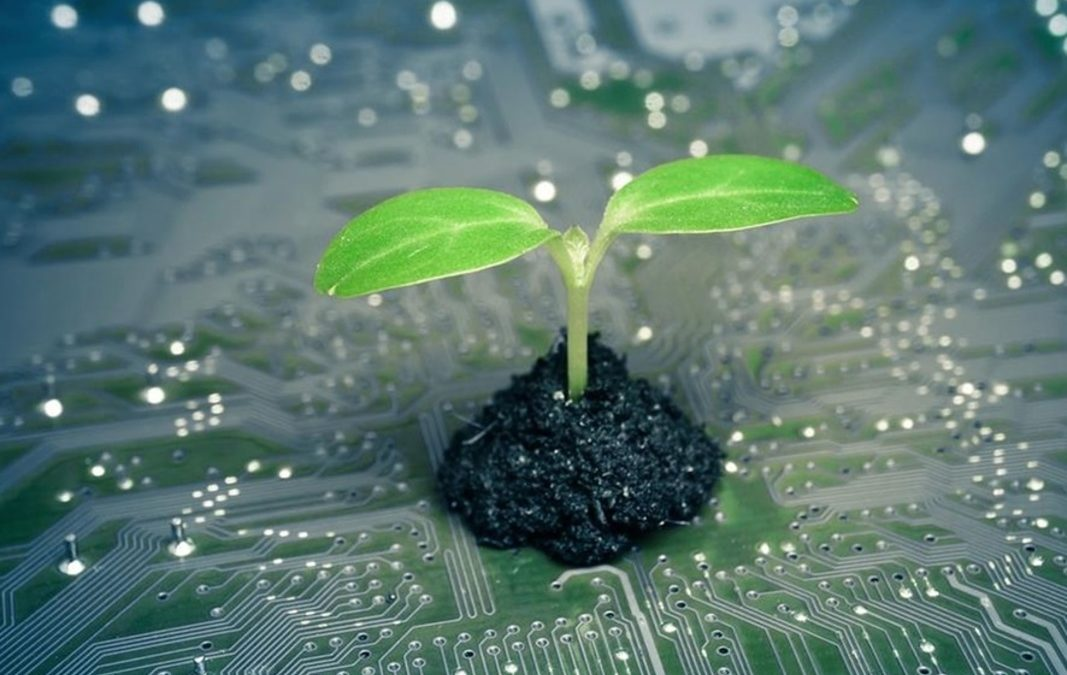 Green IT : l'écologie éthique et écologique de l'informatique